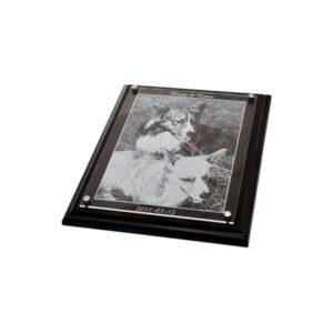 Träplakett plexiglas med exempelgravyr foto